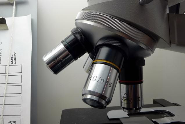 La investigación en el Instituto Oftalmológico Amigó
