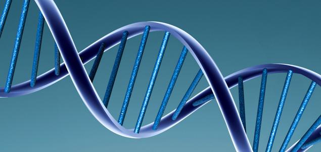 La genética no solo decide el color de tus ojos